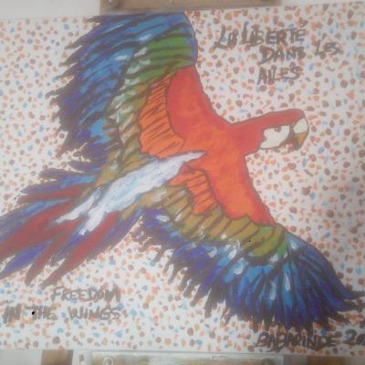 L'oiseau de Liberté(46cm-55cm)/BIRD OF FREEDOM